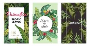 Tropikalni li?ci plakaty D?ungla zasadza lato ulotki, bananowy palmowego li?cia wz?r, ulistnienie projekt Wektorowy palmowego li? ilustracja wektor