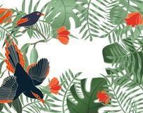 Tropikalni li?ci sztandary na bia?ym tle Egzotyczny botaniczny projekt greenery powitanie Tropikalnych ro?liien li?cie palma z pt ilustracja wektor