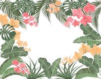 Tropikalni liście banan, koks, monstera i ogawa, różowa orchidea w pastelowych kolorach Miejsce dla reklamować, reklamuje ilustracji