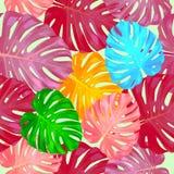 Tropikalni liście i kwiaty drzewko palmowe bezszwowy wzoru Fotografia Royalty Free
