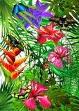 tropikalni motyli kwiaty Obrazy Royalty Free