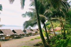 Tropikalni odczucia obraz royalty free