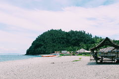 Tropikalni odczucia fotografia royalty free