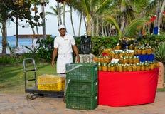 tropikalni owoc karaibscy ananasy Obrazy Royalty Free