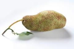 Tropikalni owoc, pulutan, lub jackfruit Zdjęcia Stock
