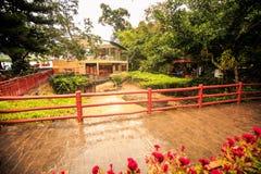 Tropikalni Parkowi stawu mosta pawilony po ulewnego deszczu Fotografia Stock