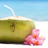 Tropikalny świeży koktajl na biel plaży Obraz Stock