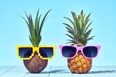 Tropikalny ananas i koks Dwa modniś owoc fotografia stock