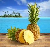 tropikalny ananasy Zdjęcia Royalty Free