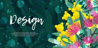 Tropikalny austalia projekta wektor opuszcza i kwitnie ilustracja wektor