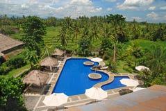 tropikalny basenu dopłynięcie Zdjęcie Royalty Free