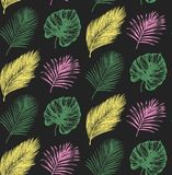 Tropikalny bezszwowy wzór w wektorze Egzotyczny palm owoc i liści tło Dżungli ulistnienia ilustracja Ręki nakreślenie ilustracja wektor