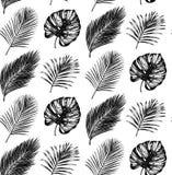 Tropikalny bezszwowy wzór w wektorze Egzotyczny palm owoc i liści tło Dżungli ulistnienia ilustracja Ręki nakreślenie royalty ilustracja