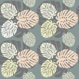 Tropikalny bezszwowy wzór z liśćmi Obraz Royalty Free