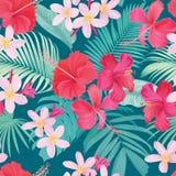 Tropikalny bezszwowy wzór z poślubnika syriacus i plumeria kwitniemy z liściem na błękitnym tle fotografia royalty free