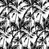 Tropikalny Czarny I Biały wzór royalty ilustracja