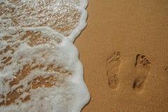 Tropikalny czerwony morze Fotografia Royalty Free