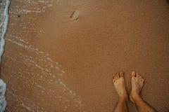 Tropikalny czerwony morze Obrazy Stock