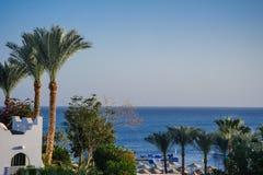 Tropikalny czerwony morze Zdjęcia Royalty Free
