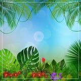 Tropikalny dżungli tło z drzewkami palmowymi i liśćmi ilustracja wektor