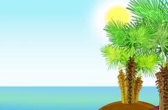 Tropikalny denny brzeg z drzewkami palmowymi Fotografia Stock