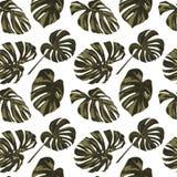 Tropikalny druk dżungli bezszwowy deseniowy Wektorowy zwrotnika lata motyw z Hawajskimi kwiatami Fotografia Stock