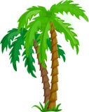 tropikalny drzewko palmowe wektor ilustracji