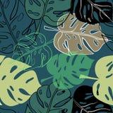 Tropikalny egzot kwitnie i rośliny z zielonymi liśćmi palma Zdjęcia Royalty Free