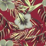 Tropikalny egzot kwitnie i rośliny z zielonymi liśćmi palma Obraz Stock