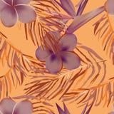 Tropikalny egzot kwitnie i rośliny z zielonymi liśćmi palma Obrazy Royalty Free