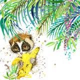 Tropikalny egzotyczny las, zieleni liście, przyroda, lemur, akwareli ilustracja akwareli tła niezwykła egzotyczna natura ilustracja wektor