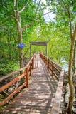 Tropikalny egzotyczny podróży pojęcie - betonowy most w zalewającym deszczu Zdjęcia Stock