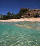 tropikalny hawaii Obraz Stock