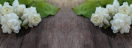 Tropikalny jaśminowy kwiat na drewnie Jaśminów liście na br i kwiaty Fotografia Stock