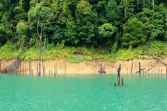 Tropikalny Jezioro Zdjęcie Stock