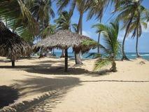 tropikalny karaibów na plaży Zdjęcie Royalty Free