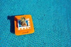 tropikalny koktajl Zdjęcia Royalty Free