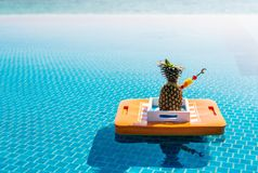 tropikalny koktajl Obrazy Royalty Free