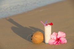 tropikalny koktajl Obraz Royalty Free