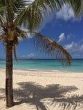Tropikalny krajobraz Zdjęcia Stock