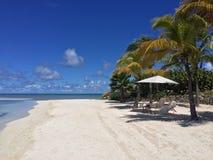 Tropikalny krajobraz Zdjęcia Royalty Free
