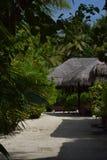 Tropikalny krajobraz (Maldives) Zdjęcia Royalty Free