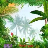 Tropikalny krajobraz z drzewkami palmowymi i liśćmi ilustracja wektor