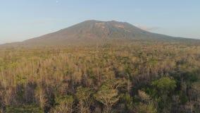 Tropikalny krajobraz z halnym Indonezja zbiory wideo