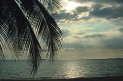 Tropikalny krajobrazowy denny piaska słońce Zdjęcie Royalty Free