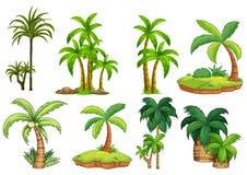 tropikalny krajobrazu royalty ilustracja