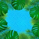 tropikalny krajobrazu Kwadratowa granicy rama również zwrócić corel ilustracji wektora piękny zwrotnika tło dobry wybór dla lata, royalty ilustracja