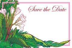 Tropikalny Kwiecisty frangipani kwiatu karty szablon Obraz Royalty Free