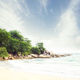 Tropikalny las, denny wybrzeże i góry, Zdjęcie Royalty Free