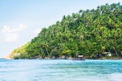 Tropikalny las, denny wybrzeże i góry, Obraz Royalty Free